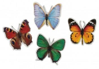 Schmetterling mit Magnet